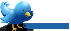 Unser Twitter-Feed